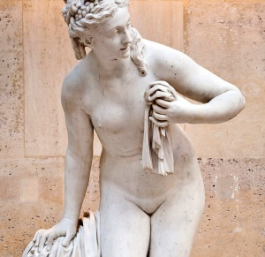 vagina-museum-lede