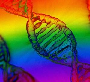 gene gay